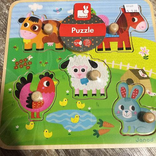 Wooden Peg Puzzle