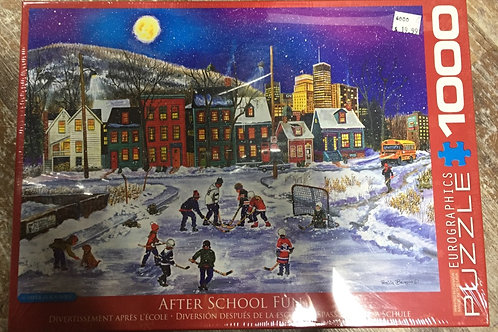 1000 Piece Eurographics Puzzle After School Fun