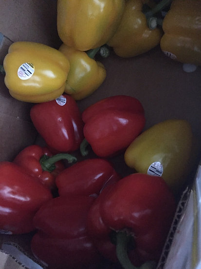 Suntastic Sweet Bell Peppers