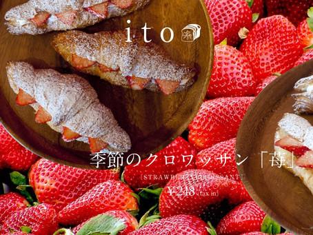 季節のクロワッサン「苺」をご紹介。