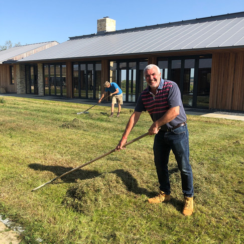 Managing Wildflowers in the Courtyard