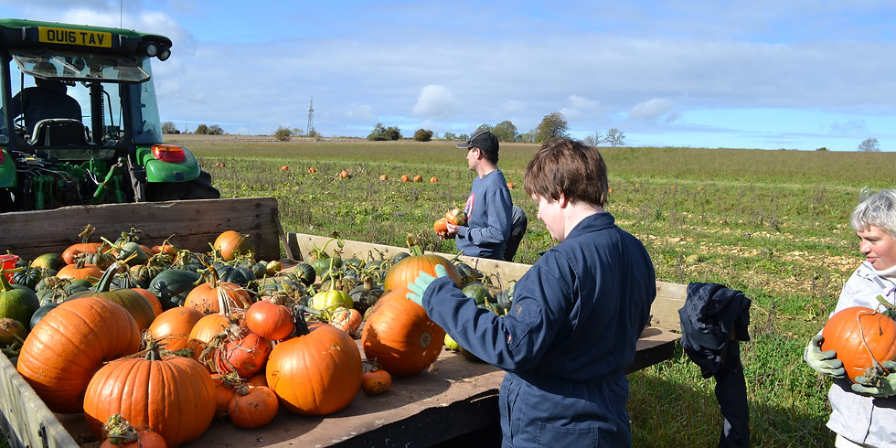 Get Squashed! Pumpkin Planting Party
