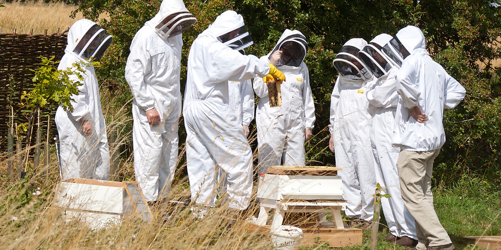 Introduction to Beekeeping (Weekend Course) *FULLY BOOKED*