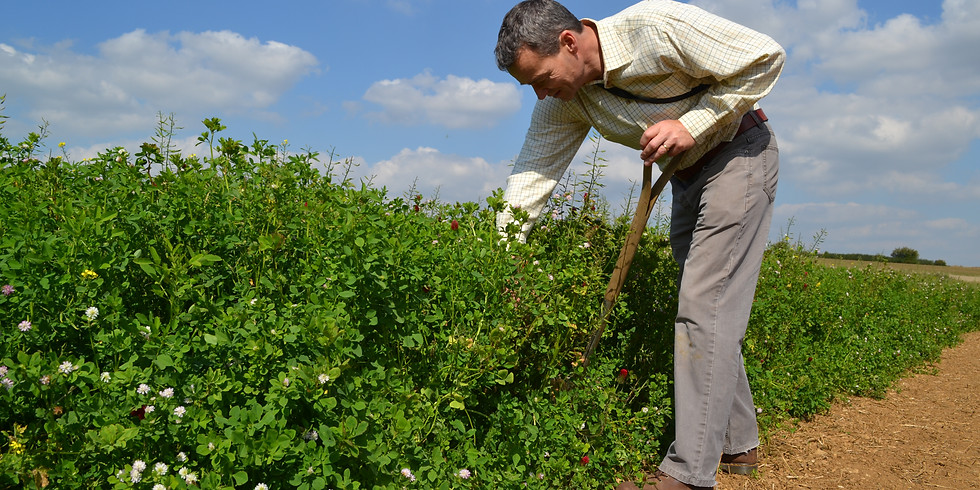 Cotswold Seeds Customer Day (Free Event)