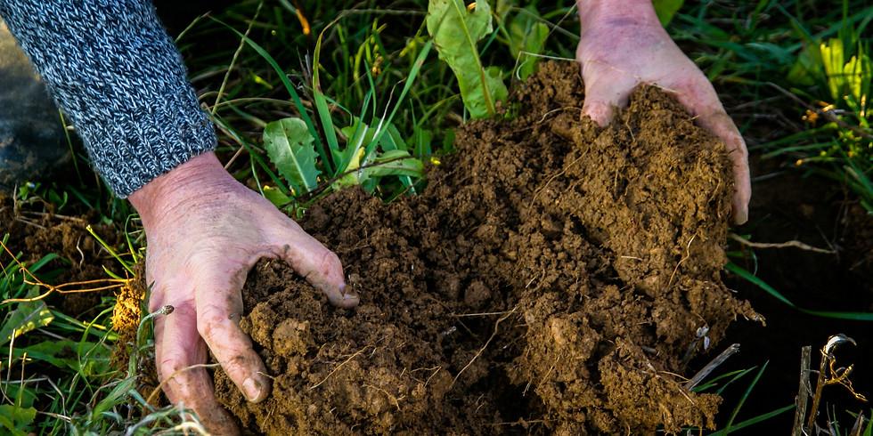 Regenerative Soil Health For Arable Farmers