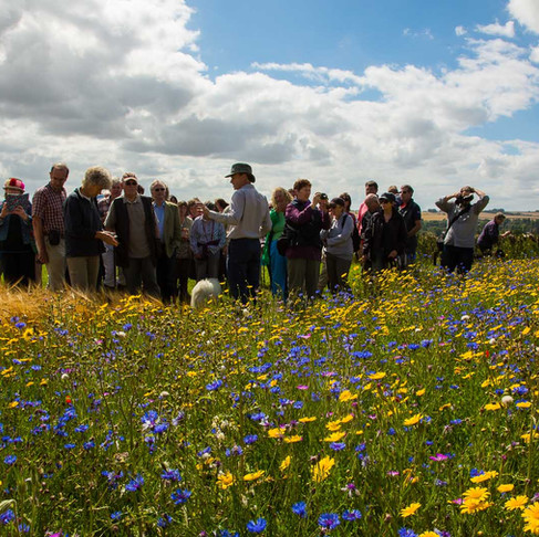 Save the Date! Special Guests Confirmed for ORFC in the Field 2021