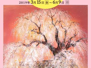 春季特別展 「花鳥風月」〜近世・近代・現代へ〜