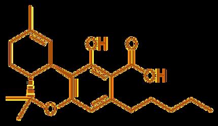 thc%252520molecule_edited_edited_edited.