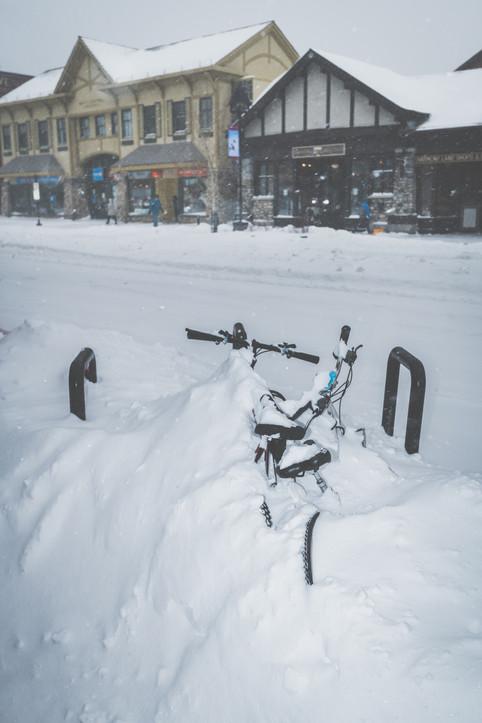 Banff Snow Storm-0934.jpg