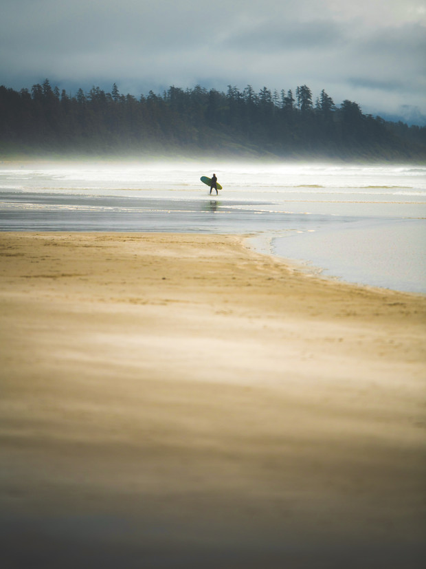 THE TOFINO SURF