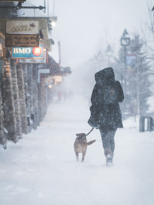 THE BANFF SNOW STORM