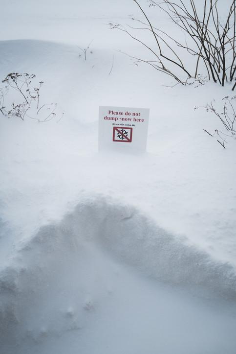 Banff Snow Storm-0943.jpg