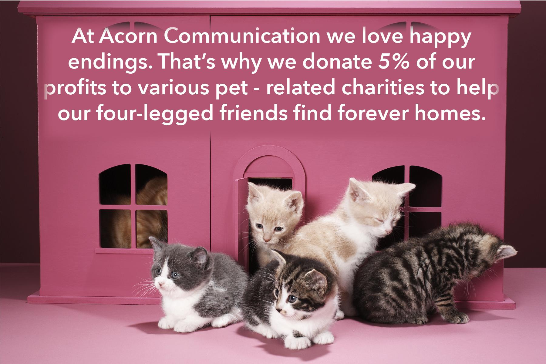 Donation Pic.jpg