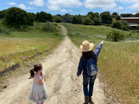 10 Toddler Friendly Hikes in the East Bay