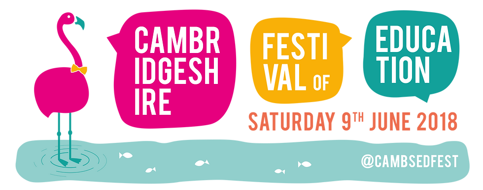 Image result for cambsedfest