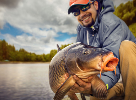 Basic Carp Fishing Pointers