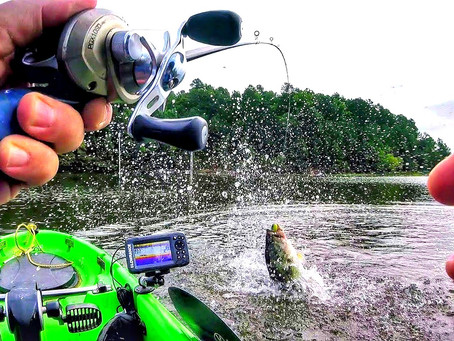 A Review of North Carolina Bass Fishing