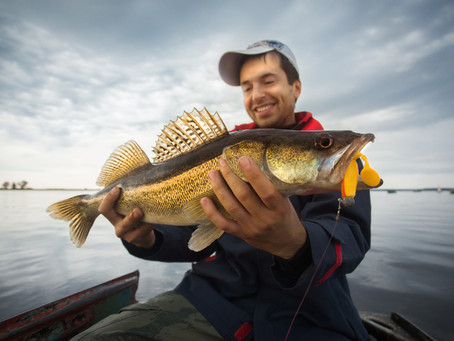 Fishing Finicky Walleyes