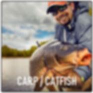 Carp Catfish.JPG