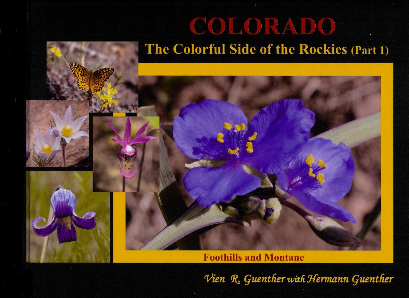 Colorado Wildflowers Part 1