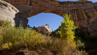 Hiking in Natural Bridges National Monument - Utah