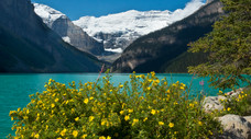 Banff National Park (Lake Louise, Vermilion Lakes, Town of Banff, Bow Falls)