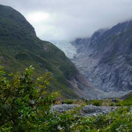 Short Hike/Tramping to Franz Josef Glacier, New Zealand