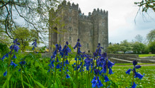 Bunratty, County Clare