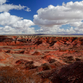The Painted Desert & the Petrified Forest National Park - Arizona