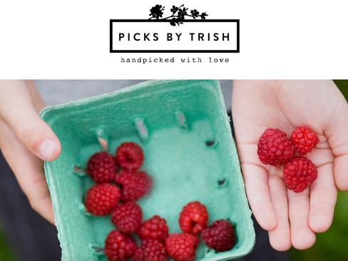Picks By Trish Magwood