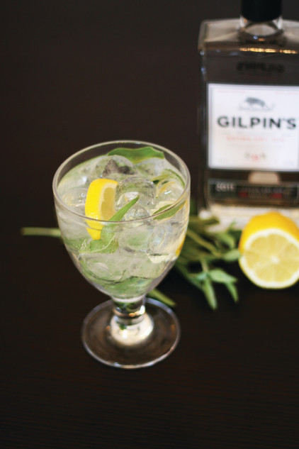 Lemon and sage gin tonic