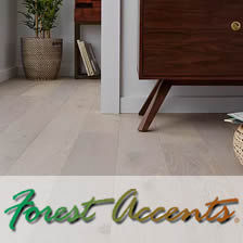 Forest Accents-co;or.jpg