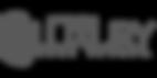 Brand-Luxury Real Estate-Logo-Trans.png
