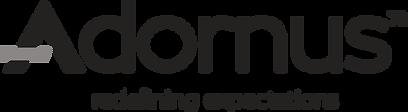 Logo-Cabinet- Adornus_Black_logo.png