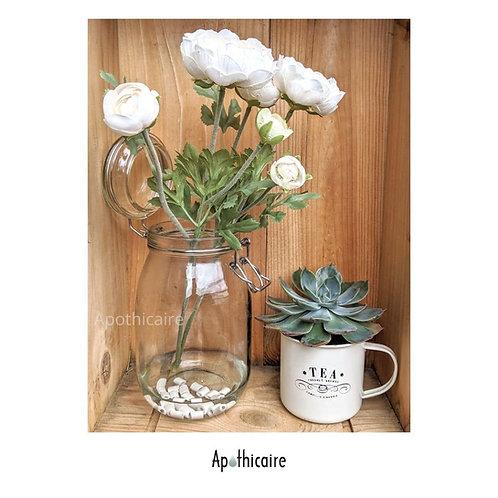 Perles en Ceramique EM pour Vase, fleurs, plantes - Apothicaire