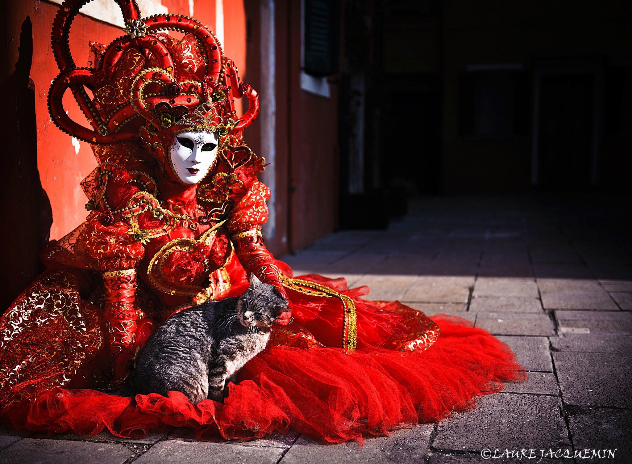 carnaval+de+venise+2013+2012+laure+jacquemin+plus+belles+photos+(29).jpg