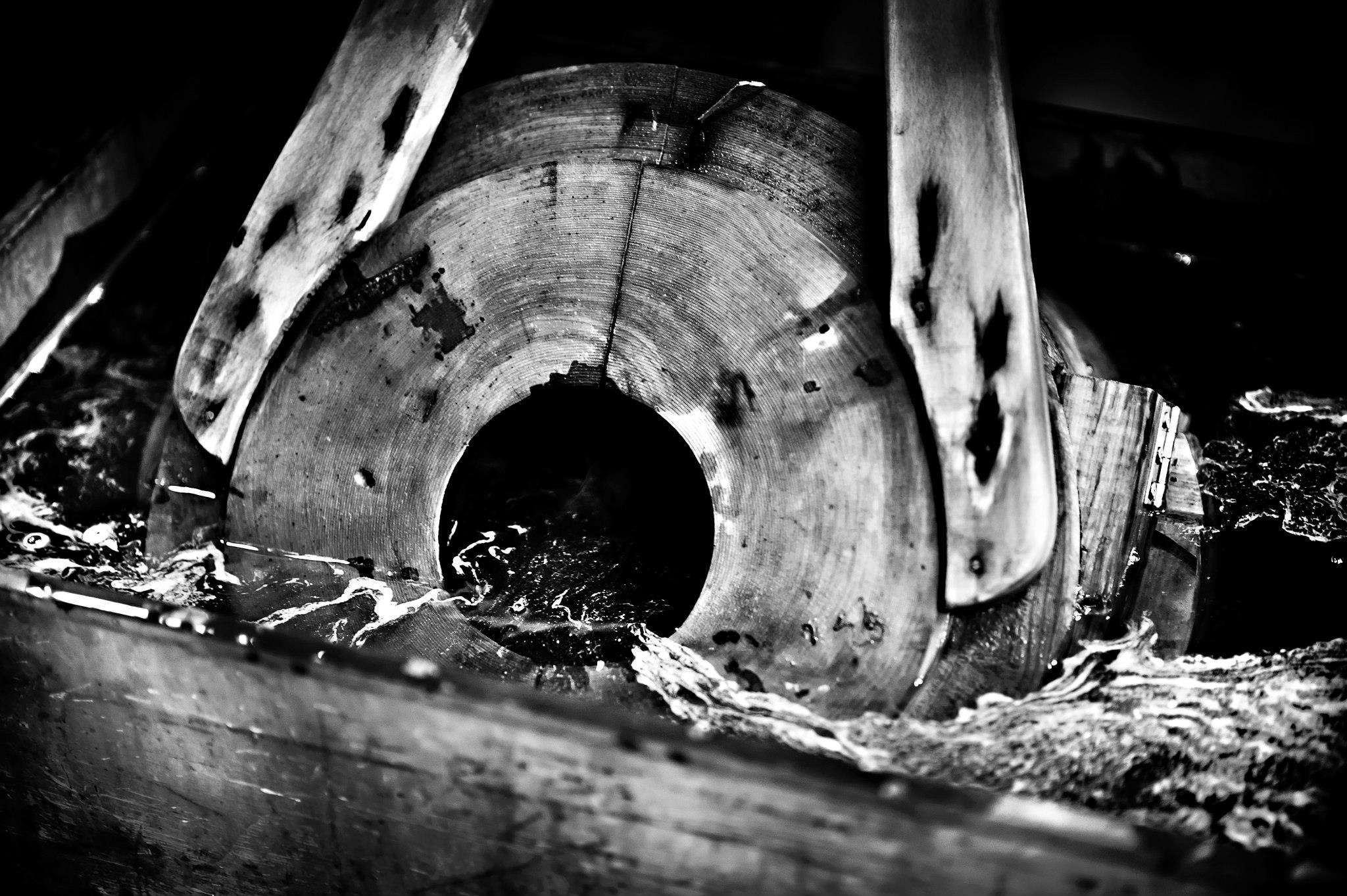 laure jacquemin murano venise photographe verre (23).jpg