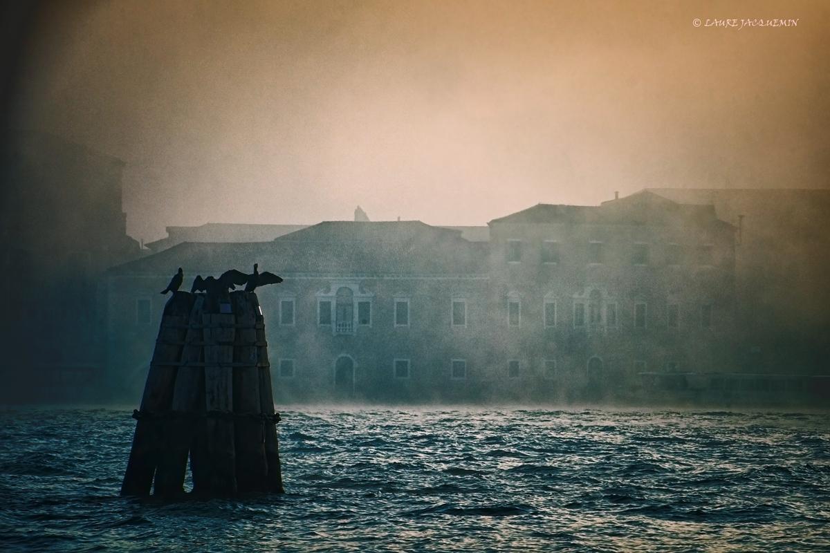 laure jacquemin venise photographe brume plus belles photos venezia foto (24).jp