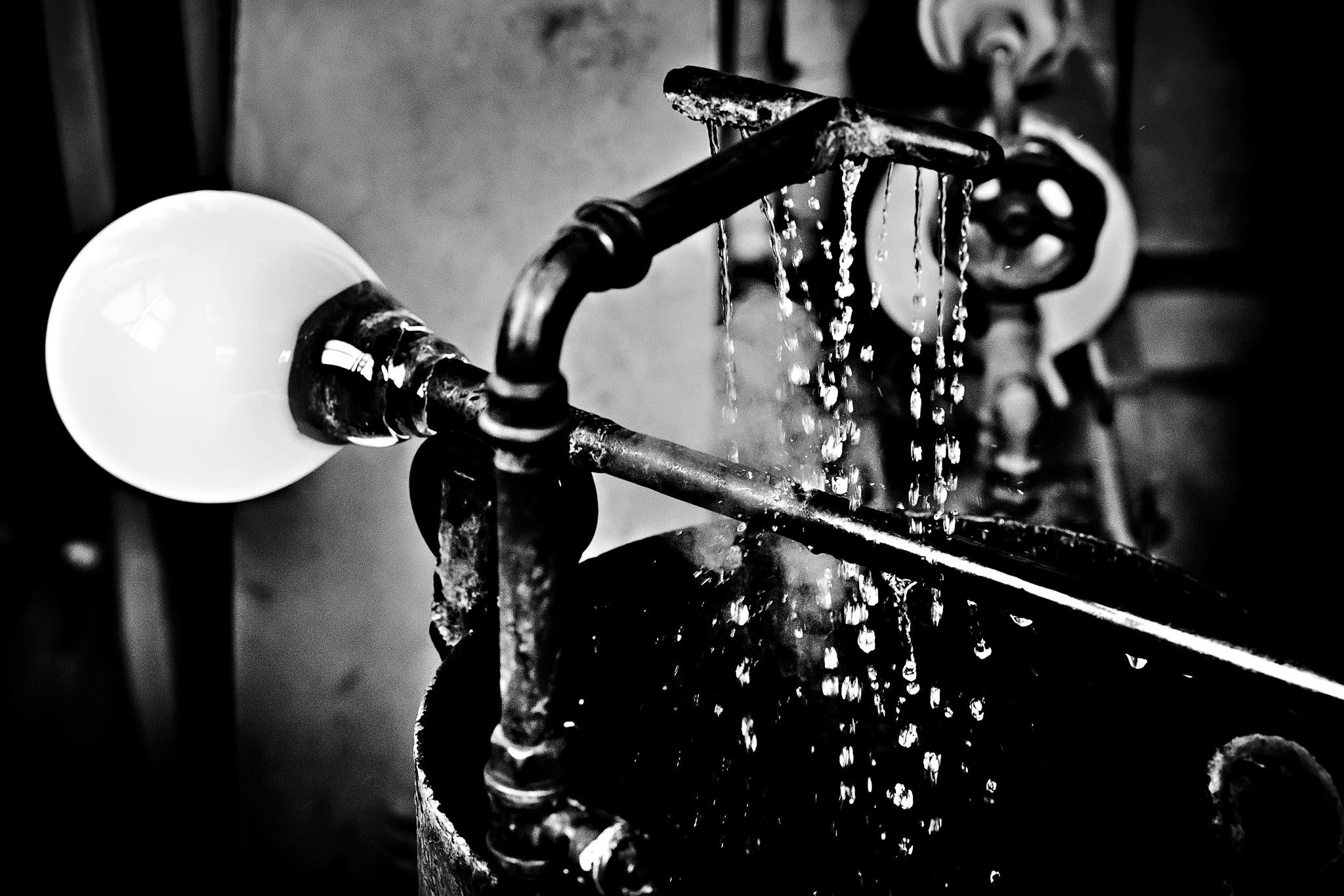 laure jacquemin murano venise photographe verre (26).jpg