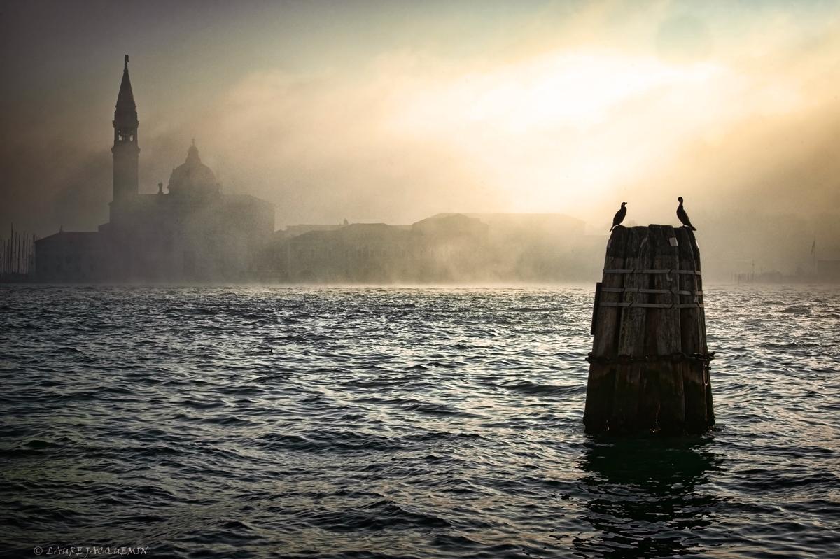 laure jacquemin venise photographe brume plus belles photos venezia foto (27).jp