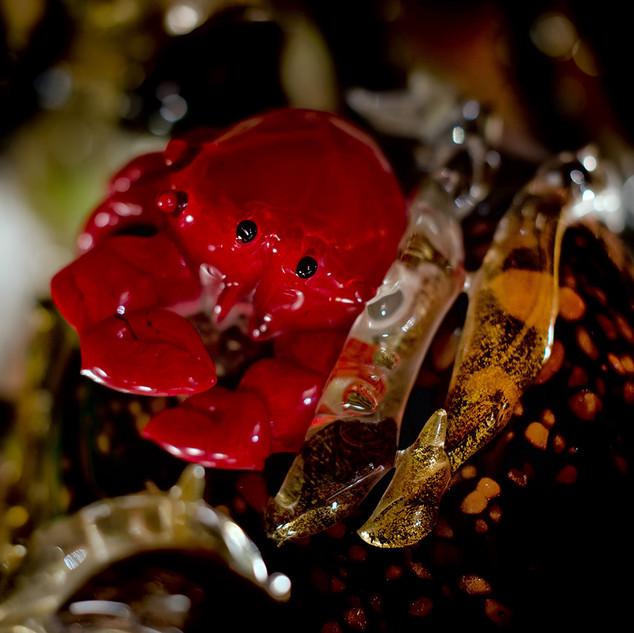 murano-photographe-verre (3).jpg