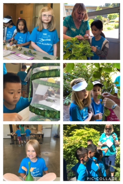 Science in the Garden Camp