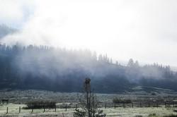 Wyoming_web-0698.jpg