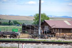 Idaho-0132.jpg