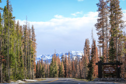 Wyoming_web-0544.jpg