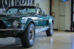 Texas_web-2583.jpg