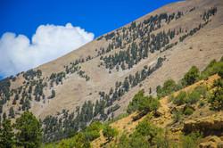 Colorado_web-1458.jpg