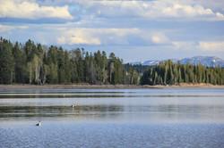 Wyoming_web-0579.jpg