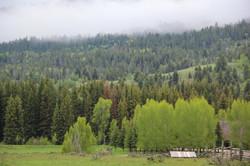 Wyoming_web-0692.jpg