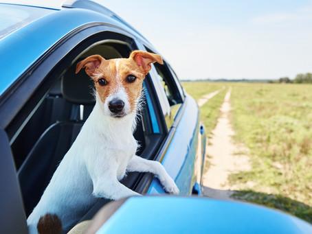 When to Refinance a Car Loan